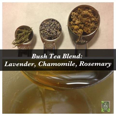 Lavender Rosemary Chamomile Bush Tea 2