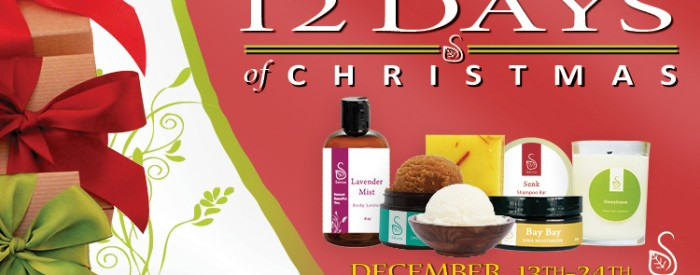 12 Day Christmas Sale Winter Banners 2012