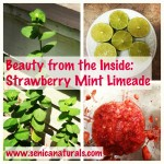 Strawberry Mint Limeade 2
