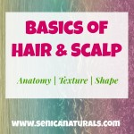 Basics of Hair & Scalp