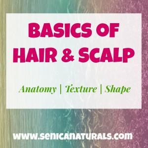 Basics of Hair & Scalp