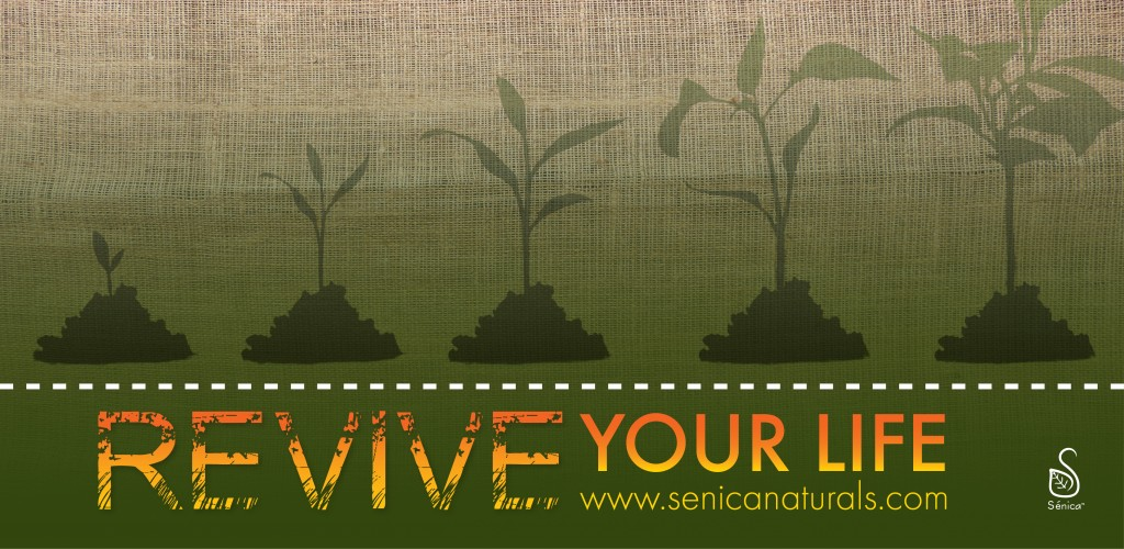 Revive Your Life Banner Senica