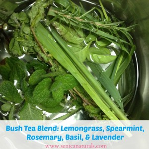 Bush Tea Blend Lemongrass, Spearmint, Rosemary, Basil, Lavender
