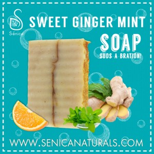 Gallery - SWEET GINGER MINT Soap - blue
