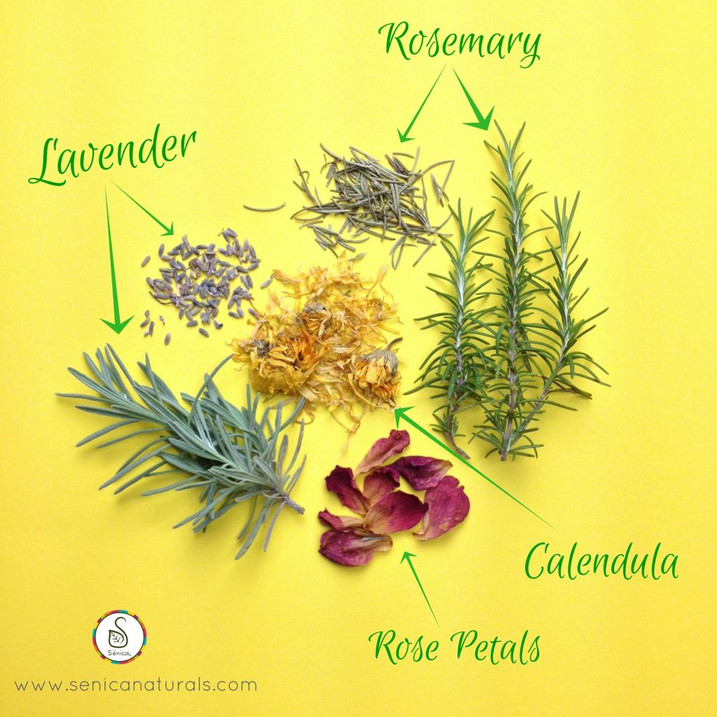 Hair Tea Herbs Labeled with Arrows - Senica