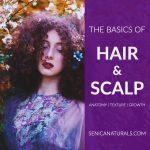 Basics of Hair & Scalp curly hair with text