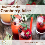How to Make Cranberry Juice – SquareSuper Food