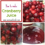 How to make cranberry juice