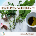 How to preserve fresh herbs square
